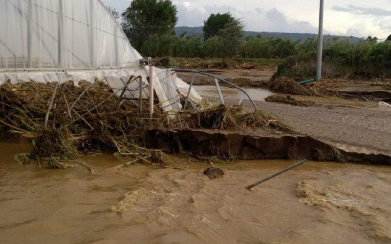 Gela, il fiume malato rischia nuove piene. Allarme alluvioni di Attiva Sicilia. «Intervenire prima che sia troppo tardi»